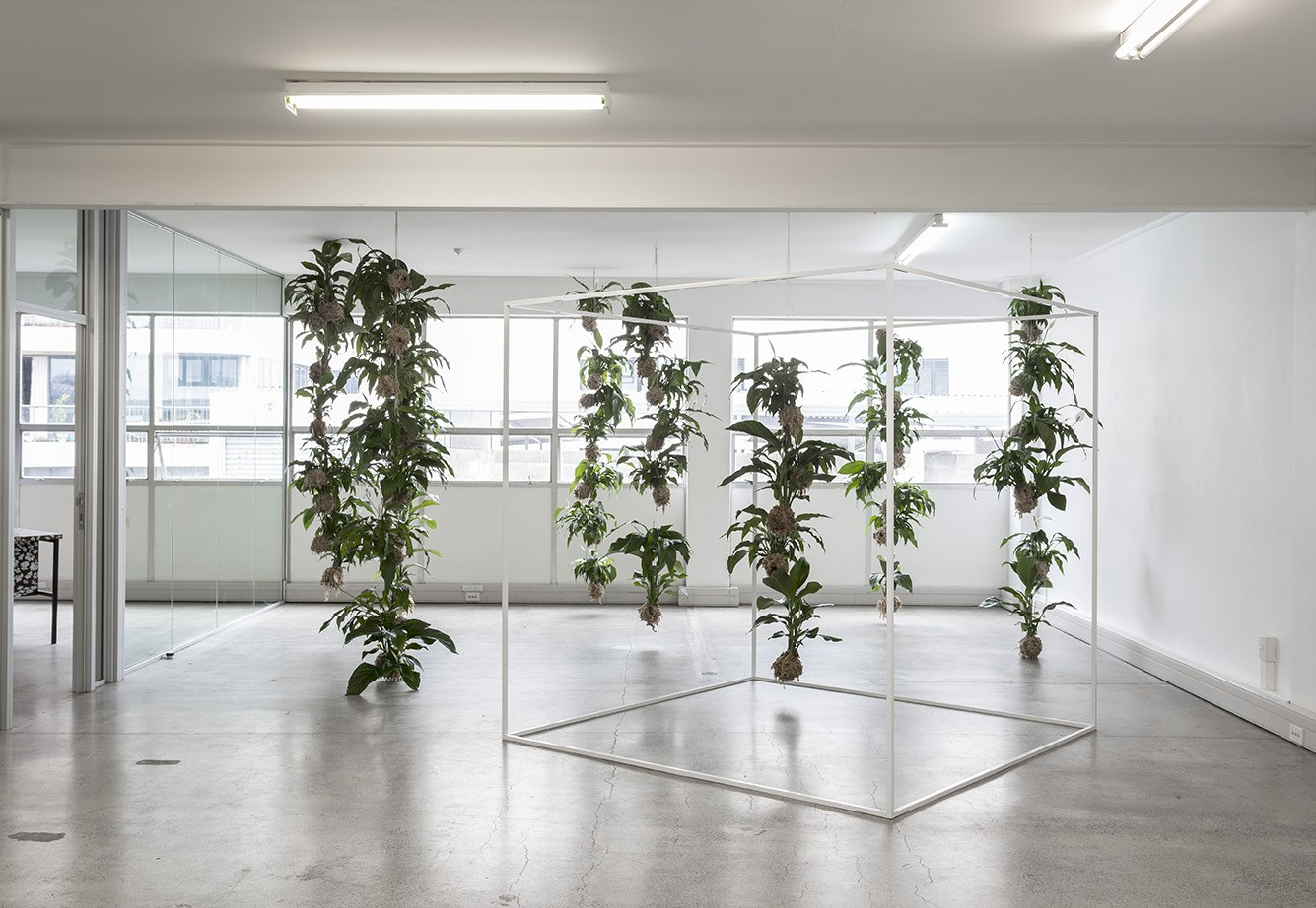78 cubic meters between the windows and the steel beam, 2017,  Spathiphyllum, string, moss, soil, microbes, aluminium